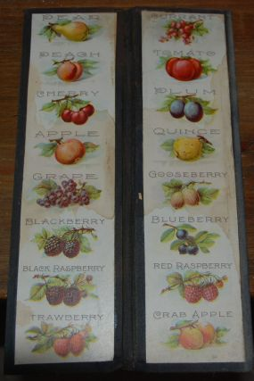 ADVERTISING FOLDER; 2-(12'3 in.). Pie Fruit