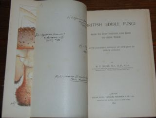 BRITISH EDIBLE FUNGI; How to distinguish and how to cook them with coloured figures up upwards of...